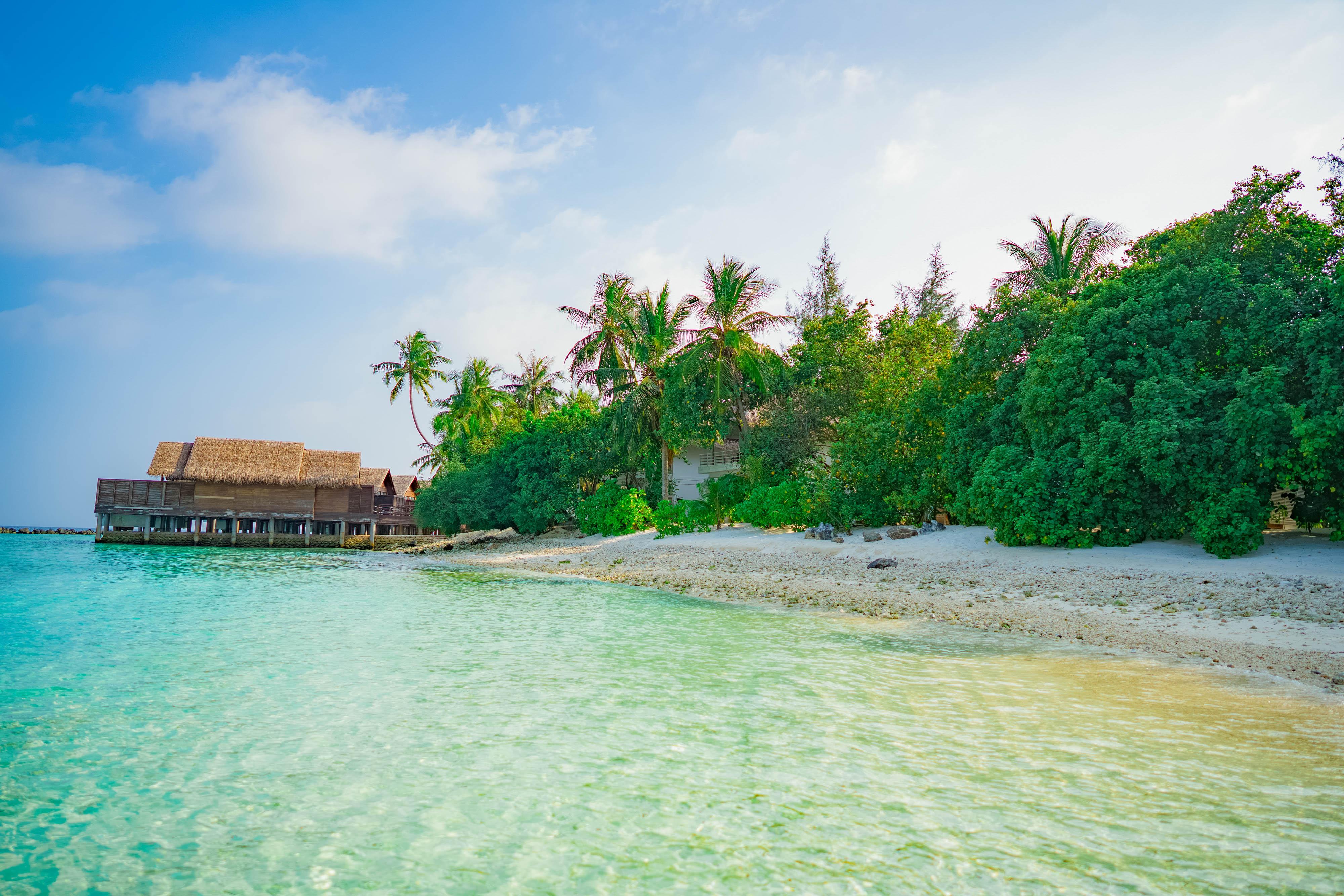 Amaya Kudarah Resort | Maldivler | Turu | Turları | Otel | Balayı | Erken Rezervasyon |  Promosyonlar | İndirim