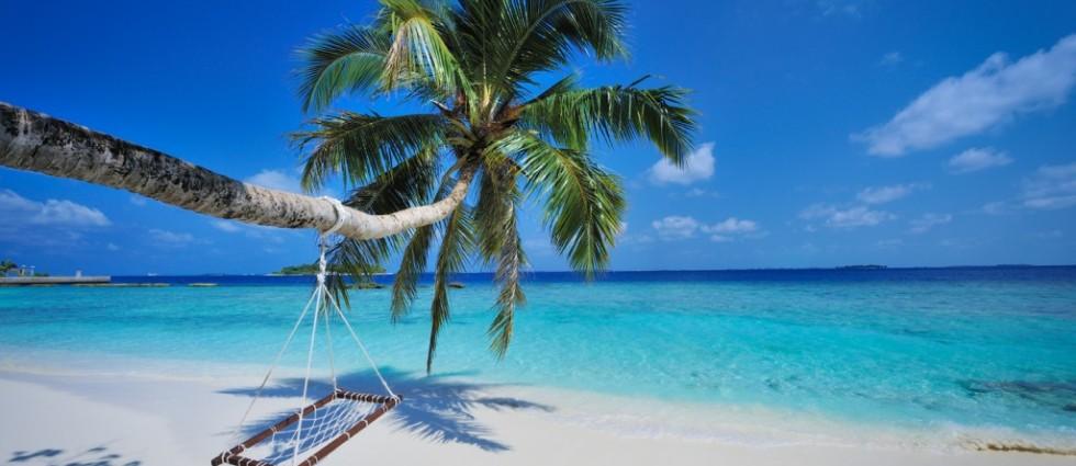 Bandos Island Resort | Maldivler | Turu | Turları | Otel | Balayı | Erken Rezervasyon |  Promosyonlar | İndirim