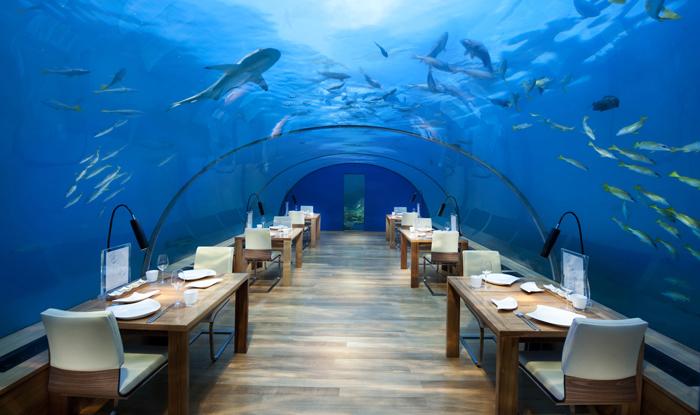 Conrad Rangali island Maldives | Maldivler | Turu | Turları | Hotel | Balayı | Erken Rezervasyon |  Promosyonlar | İndirim